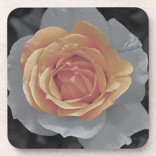 Orange rose blossoms print coasters
