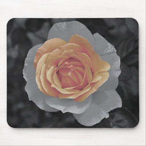 Orange rose blossoms print mouse pad