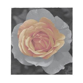 Orange rose blossoms print memo pads