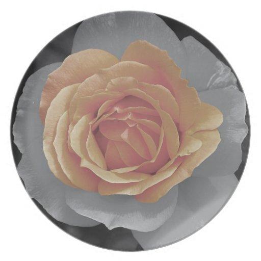 Orange rose blossoms print dinner plates