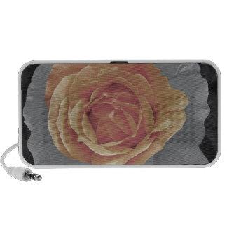 Orange rose blossoms print speakers