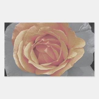 Orange rose blossoms print rectangular sticker