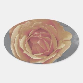 Orange rose blossoms print stickers