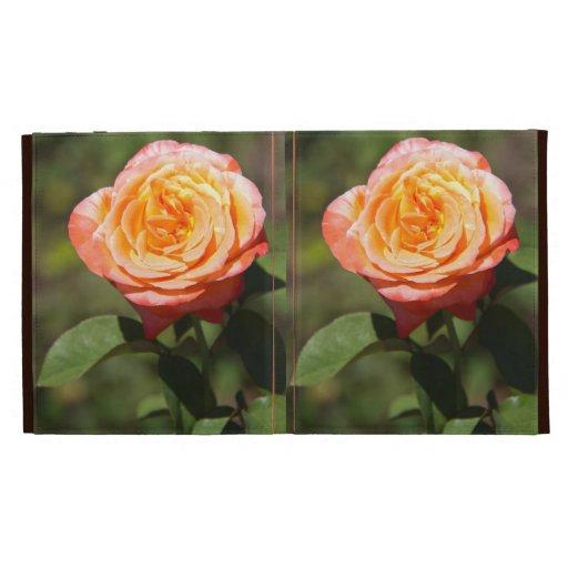 Orange Rose with Pink Edges iPad Folio Cases