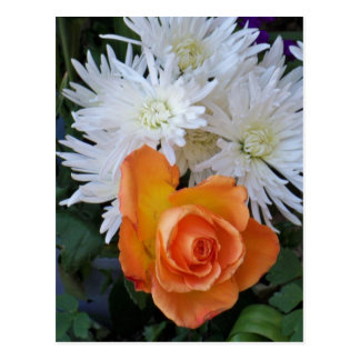 Orange Rose with White Flowers Postcards