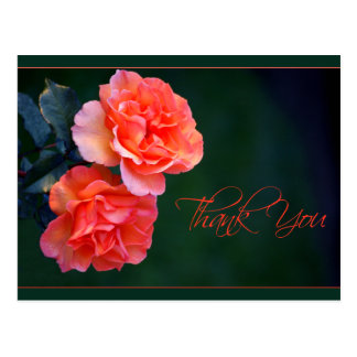 Orange Roses Thank You Postcard