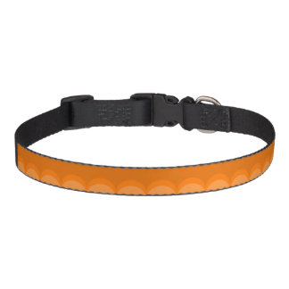 Orange Semi Collar Dog Collar