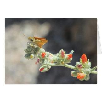 Orange Skipperling Butterfly Card