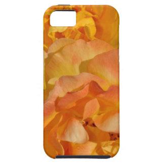 Orange spring rose blossoms iPhone 5 case