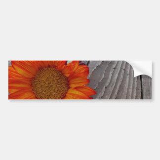 Orange Sunflower Bumper Sticker