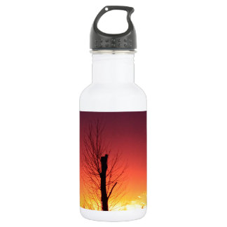 Orange sunset 532 ml water bottle
