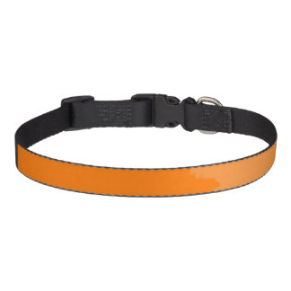 Orange Two Tone Collar Pet Collar