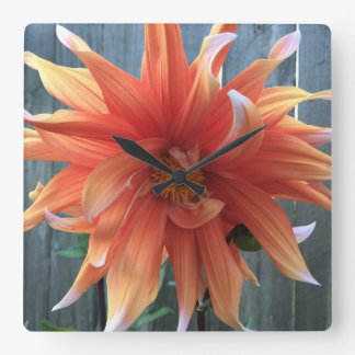 Orange-white blossom wallclock