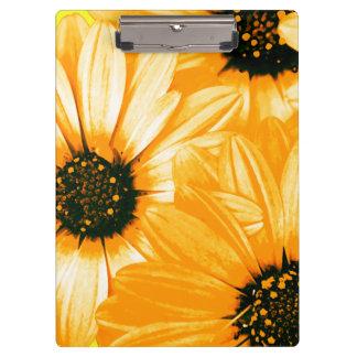 Orange/Yellow Daisies - Clipboard