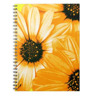 Orange/Yellow Daisies - Spiral Notebook
