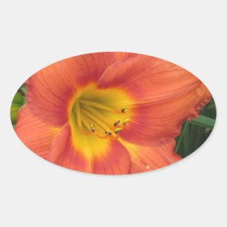 Orange/Yellow Daylilly Oval Sticker