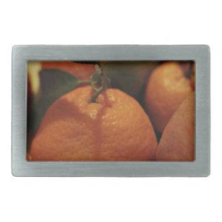 Oranges apples fruit on a table rectangular belt buckles