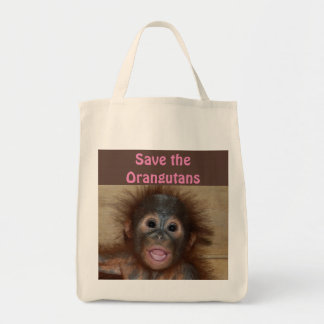 Orangutan Animal Babies