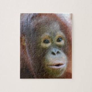 Orangutan on Island of Borneo Jigsaw Puzzle