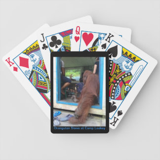 Orangutan Siswe watches IMAX Movie Playing Cards