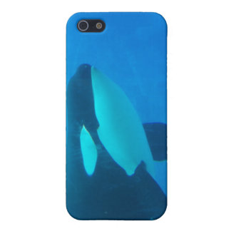 orca killer whale underwater blue iPhone 5 case