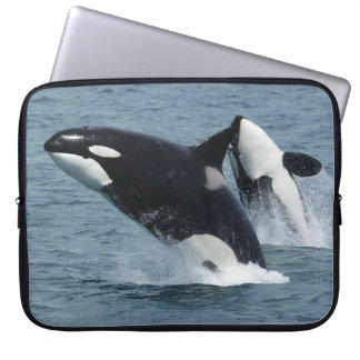 Orca Killer Whales Breaching Laptop Computer Sleeve