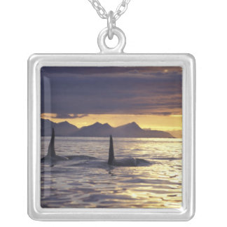 Orca or Killer whales Necklace