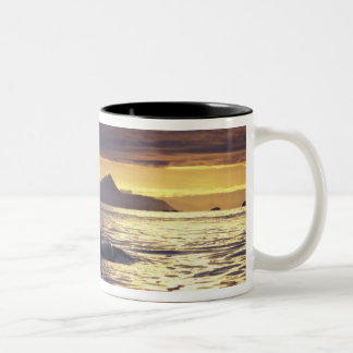 Orca or Killer whales Two-Tone Coffee Mug