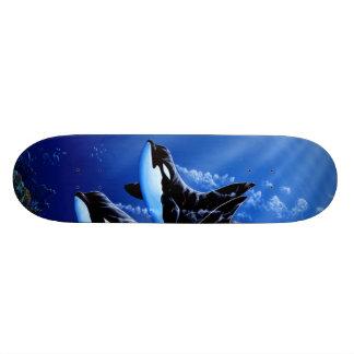 Orca- skateboard by Apollo