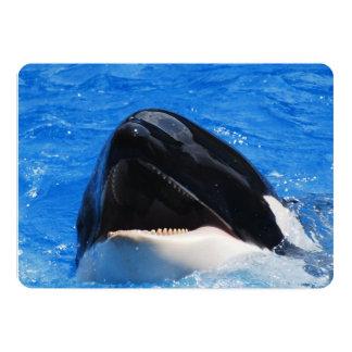 Orca Whale Personalized Invite
