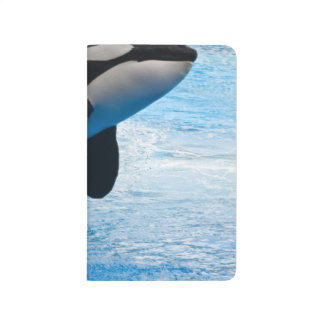 Orca Whale Journal