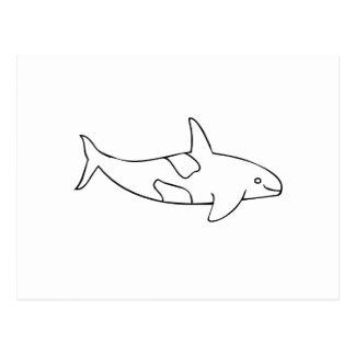 Orca Whale Postcard