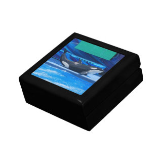 Orca Whale Showing Off Small Square Gift Box