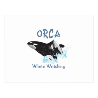 ORCA Whale Watching Postcard