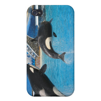 Orca Whales iPhone Case Cover For iPhone 4