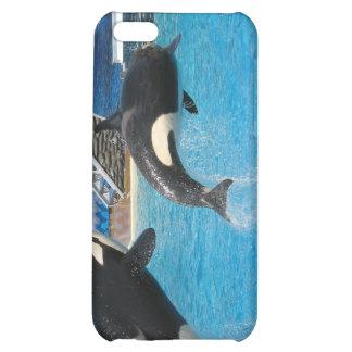 Orca Whales iPhone Case iPhone 5C Case