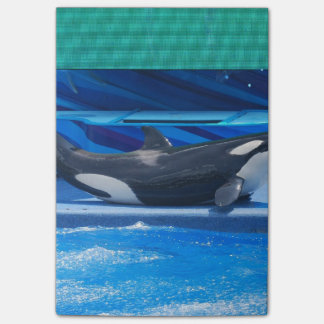 Orca Whales Post-it® Notes