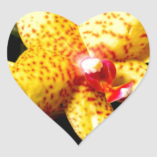 Orchid Blossoms Wedding Blossoms Heart Sticker