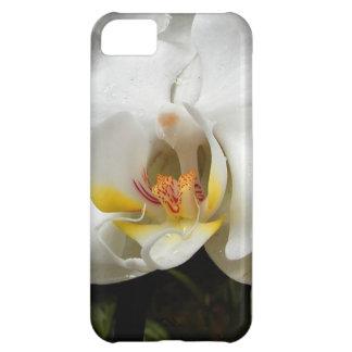 Orchid Flower iPhone 5C Case