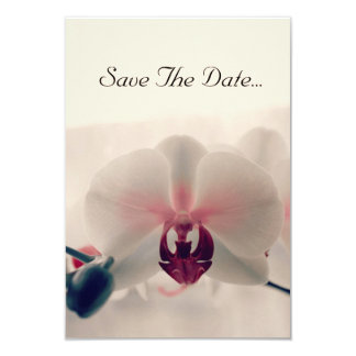 Orchid 'Save The Date' Card 9 Cm X 13 Cm Invitation Card
