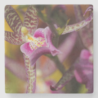 Orchid Stone Coaster