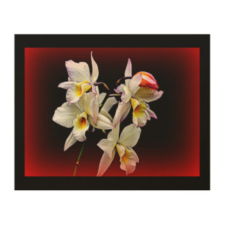 """ORCHIDS IN BLOOM"" 8x10 PHOTOGRAPH ON WOOD Wood Print"