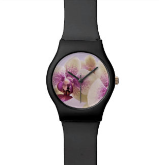 orchids watch
