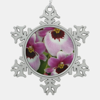 Ornament - Pansy Orchid