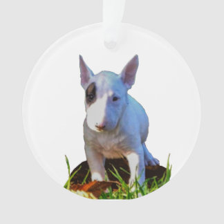Ornament Personalized fir tree - Bull terrier