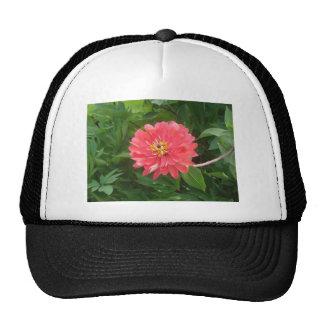 ORville's fashion Trucker Hat