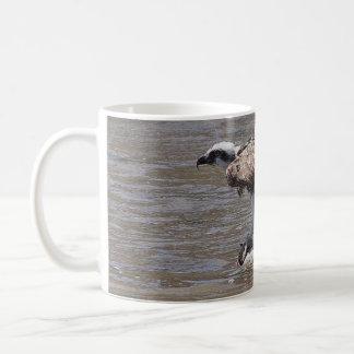 Osprey Bird Wildlife Animal Raptor Fish Mug