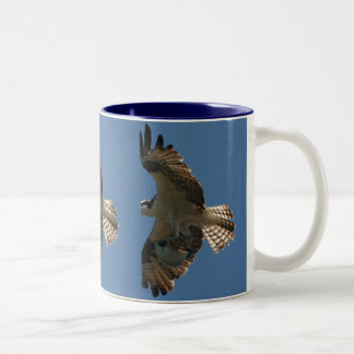 Osprey Raptor & Halibut Fish Mug