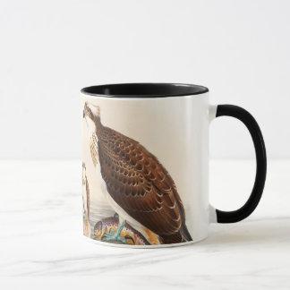 Osprey Sea Hawk John Gould Birds of Great Britain Mug