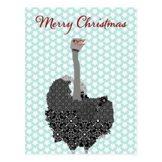 Ostrich Blue Star Postcard Christmas